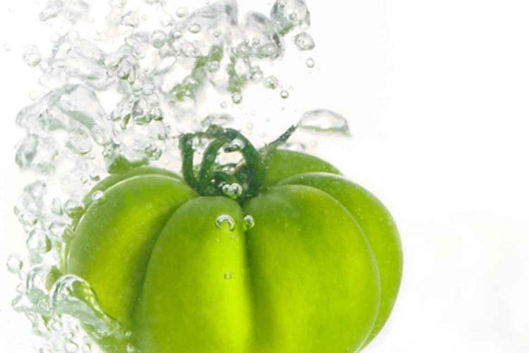 packshot alimentaire tomate verte